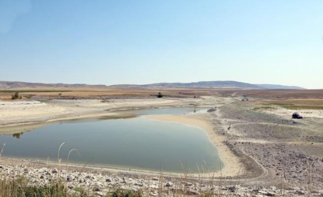 Sulama göletinde su kalmayınca balıkçılar akın etti