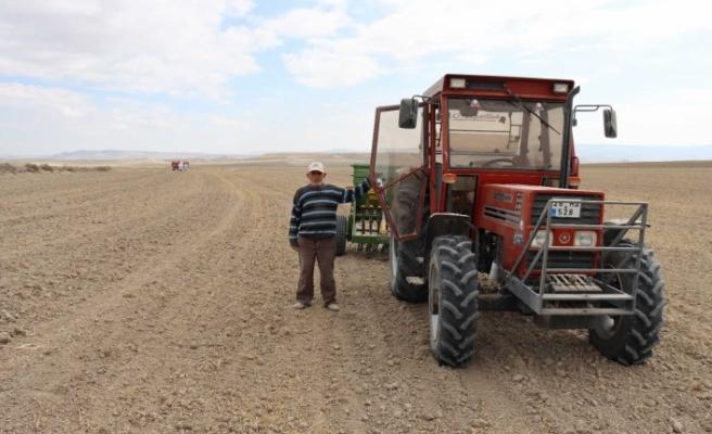 Günyüzü ilçesinde buğday ekimi başladı