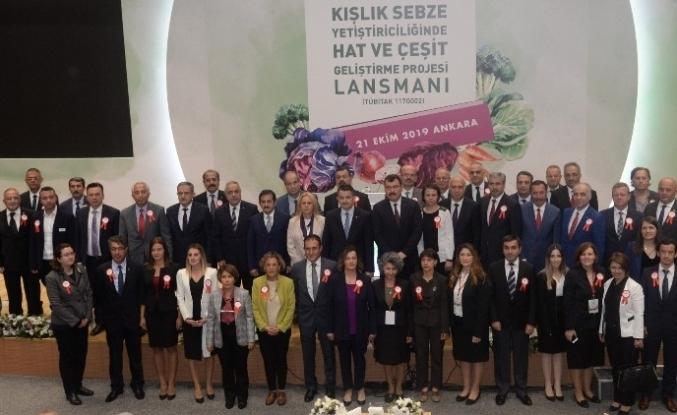 ESOGÜ'den Kışlık Sebze Yetiştiriciliğinde Hat ve Çeşit Geliştirme Projesi'ne katkı